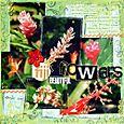 Fijis_beautiful_flowers