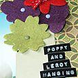 Poppy_detail