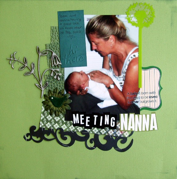Meeting_nanna